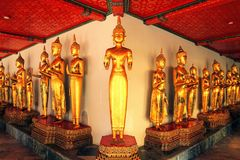 Bangkok, Thaïlande - 19 février 2016 : Position d'or de statues de Bouddha Photos libres de droits