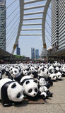 Bangkok, Thaïlande - 8 mars 2016 : Tour du monde de 1600 pandas en Th Photos stock