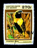 A stamp printed in Republic of Benin shows an image of Euplectes afer bird. stock images