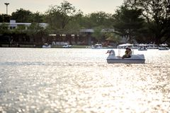 People ride duck boat at public park name Suan Luang Rama IX on sunset time Bangkok, Thailan. Bangkok, Thailand. - April 16, 2017 : People ride duck boat at stock photo