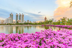 Bangkok thailand  Benjasiri Royalty Free Stock Photos