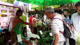 Bangkok, Thailand - 2019-03-17 - Customer Pays For Vegetable Purchase at Market stock video footage