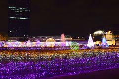 Ambiance of traveler visit in Thailand illumination festival 2017 Royalty Free Stock Images