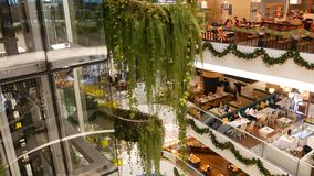 Bangkok, Thailand - 18 December, 2018 The Emquartier luxury shopping center. Design of mall, green environmentally stock footage