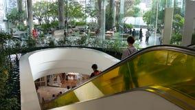BANGKOK, THAILAND - 18 DECEMBER, 2018 The Emquartier luxury shopping center. Design of mall, green environmentally stock video footage