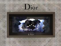 Bangkok Thailand - December 20, 2017: Ställa ut av Dior Brand Boutique royaltyfria bilder
