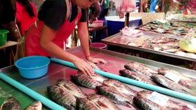 Bangkok Thailand - 2019-03-17 - försäljaren ordnar Live Tilapia Fish For Display på marknaden lager videofilmer