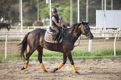 BANGKOK THAILAND - FEB 27: den unidentified pojken övar till att rida en häst i häst skolar sätter in på Februari 27, 2013 thailan arkivbilder