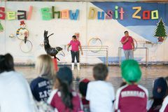 Bangkok,Thailand,Feb 13 ,2018 ,Sea lion show play ball with bask. Et with animal trainers on stage of Dusit Zoo show loops or hula hoops line with animal Royalty Free Stock Image