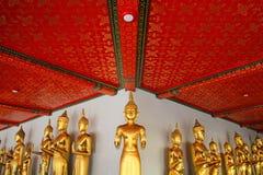 Bangkok, Thailand - 19. Februar 2016: Viel goldene Buddha-Statue, die mit roter Decke und weißer Wand bei Arunratchawararam Tem s Stockbilder