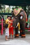 Bangkok Thailand - Februari 6, 2011 Royaltyfri Foto