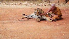 BANGKOK THAILAND - FEBRUARI 2014: Folk med tigertemplet arkivfilmer