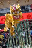 Chinese New Year, the Lion dance Royalty Free Stock Photography