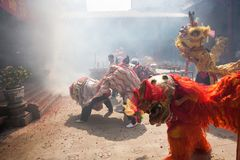 Chinese New Year, the Lion dance Stock Photo