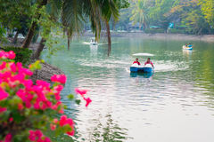 Boating in Lumphini park Royalty Free Stock Photography
