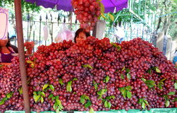 Bangkok, Thailand: Grapes at Chatuchak Market Royalty Free Stock Image