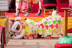 BANGKOK,/THAILAND-JANUARY 20:  lion dance dressing during parade in Chinese New Year Celebrations on January 20, 2013 Royalty Free Stock Photos