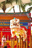 BANGKOK,/THAILAND-JANUARY 20:  lion dance dressing during parade in Chinese New Year Celebrations on January 20, 2013 Royalty Free Stock Photography