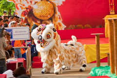 BANGKOK,/THAILAND-JANUARY 20:  lion dance dressing during parade in Chinese New Year Celebrations on January 20, 2013 Stock Images