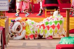 BANGKOK /THAILAND-JANUARY 20: liondansdressingen under ståtar i kinesiska berömmar för nytt år på Januari 20, 2013 Royaltyfria Foton