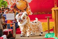 BANGKOK /THAILAND-JANUARY 20: liondansdressingen under ståtar i kinesiska berömmar för nytt år på Januari 20, 2013 Arkivbilder