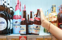 Brewing beer. woman hands are holding bottles.stacked on a shelf in a supermarket royalty free stock photography