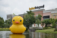 BANGKOK, THAILAND - JULY 7,2014 : Giant rubber duck in front of the Index Living Mall on july 7,2014 in bangkok. Index Living Mall is a home supermarket Stock Photo