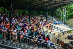 People watching show at the zoo. Bangkok, Thailand - Jun 16, 2016. People watching show at Safari World in Bangkok, Thailand. The park is a tourist attraction Royalty Free Stock Images