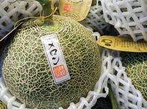 BANGKOK, THAILAND - JUNE 09: Imported Melon with royalty free stock photography