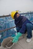 Bangkok Thailand, kvinnaarbetare på överkanten av en byggnadsplats Arkivfoton