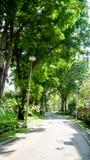 BANGKOK, THAILAND - 11. MÄRZ 2017: Eine Wegweise und ein grüner Wald Stockbilder