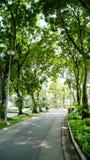 BANGKOK, THAILAND - 11. MÄRZ 2017: Eine Wegweise und ein grüner Wald Lizenzfreie Stockbilder