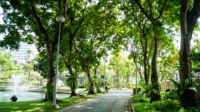 BANGKOK, THAILAND - 11. MÄRZ 2017: Eine Wegweise und ein grüner Wald Stockfotos