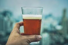 Handsome young man drinking beer royalty free stock photo