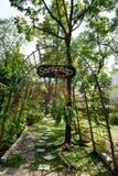BANGKOK THAILAND - MARS 11, 2017: En gåväg- och gräsplanskog Royaltyfri Fotografi