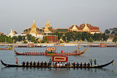 BANGKOK, 5 THAILAND-MEI: Verfraaide aakparades in Chao Phr Royalty-vrije Stock Afbeeldingen