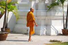 Bangkok, Thailand: Monk at Wat Mahathat Royalty Free Stock Photo