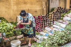 BANGKOK THAILAND - NOVEMBER 07, 2015: Den lokala kvinnan säljer thailändsk st Royaltyfria Bilder