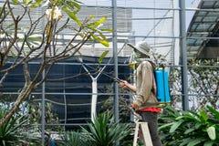 Bangkok, THAILAND - November 29: Mensentuinman die een spuitbus gebruiken voor Stock Afbeeldingen
