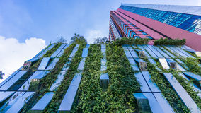 Bangkok, Thailand - 22 November 2015 : Vertical Garden of Wyne Sukhumvit (the high-end condominium) at the Sukhumvit mid-town. Vertical Garden of Wyne Sukhumvit Stock Photos