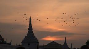 Bangkok Thailand - Oktober 14, 2016: Medborgare av Bangkok runt om den storslagna slotten i Bangkok, att betala respekt till avli Arkivbilder