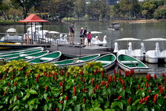 Bangkok, Thailand: Rental Duck Boats in Lumphini Park Royalty Free Stock Photos