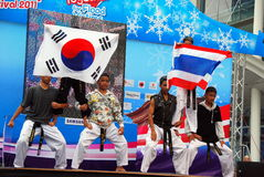 Bangkok, Thailand: Tae Kwan Do Festival Royalty Free Stock Photos