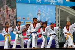Bangkok, Thailand: Tae Kwan Do Performance Stock Photography