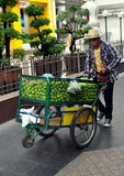 Bangkok, Thailand: Vendor Selling Limes Royalty Free Stock Photography