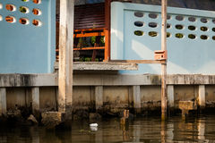 Bangkok thonburi klongs - canals view Stock Photography