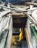 Bangkung di Wat Fotografia Stock Libera da Diritti