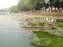 Bangla hermoso de Bagerhat foto de archivo