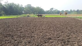 Bangladesch-Dorf lizenzfreie stockfotos