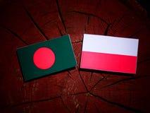 Bangladesh flag with Polish flag on a tree stump isolated. Bangladesh flag with Polish flag on a tree stump royalty free illustration